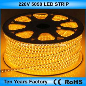 Лучшая цена SMD 5050 гибкие светодиодные индикаторы полосы 220V
