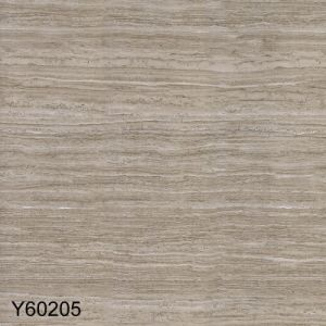 Verticaal keek de Marmeren Opgepoetste Verglaasde Tegels van het Porselein