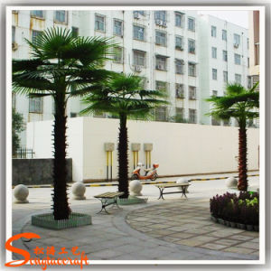 Alta qualidade de palmeiras tropicais Artificial populares