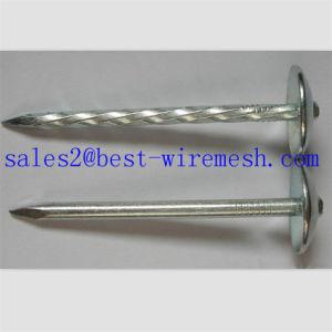 Dach-Nägel mit Regenschirm-Kopf-/Stahl-verdrehtem Schaft-Dach-Nagel