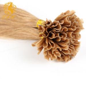 브라질어 머리 연장 9 색깔 브라운 금발 Kertain Prebonded 사람의 모발 연장 18-24 인치 자유로운 출하를 U 기울이십시오