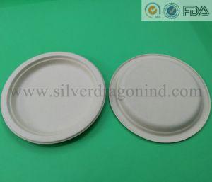 Plaque de pâte à papier brut biodégradable (Food Grade)