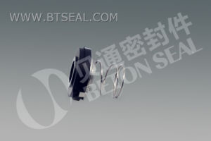 El sello mecánico para Tri-Clover BTRI (S)