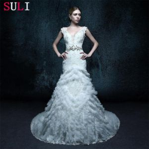 V Neck Appliques Real Photo Wedding Dress (ZXB-32)