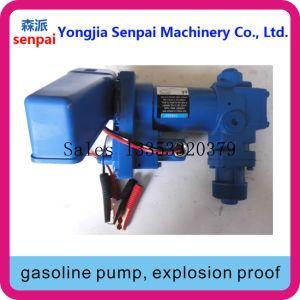 폭발 방지 Dyb50/75-DC12b 주유 펌프