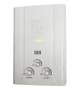 Conduta de estilo exterior - aquecedor de água a gás de combustão (JSD-F65)