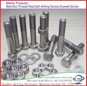 DIN934 견과를 가진 탄소 강철 J/L/I 기초 고정 수나사 또는 고정 수나사 또는 hex 놀이쇠 DIN933/Hexagon 플랜지 Bolt/T 놀이쇠 드는 눈 놀이쇠 또는 u-볼트 또는 포가 놀이쇠, Zp/HDG