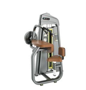 Macchina di forma fisica di Tricep messa strumentazione commerciale FIAT di ginnastica della costruzione di corpo