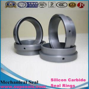 Высокое качество стандартных и нестандартных кольцевые уплотнения из карбида кремния