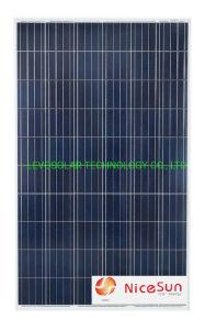 Libre de pid del módulo de 270W de energía solar fotovoltaica la Poli con el grado a las celdas solares