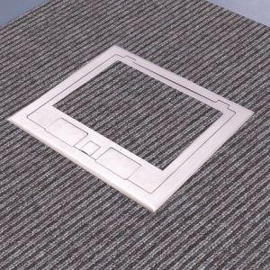 Caja de toma de palabra y palabra de Verificación de planteadas planta de acceso y suelo de cemento y el suelo de madera