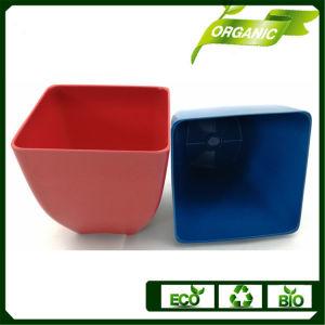 多彩なEcoの友好的なタケファイバーの植木鉢