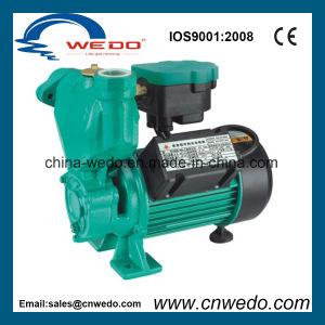 elektrische Selbst-Saugende Pumpe des Wasser-1awzb370k