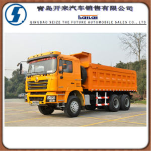 Veículo de transporte Tecnologia Homem Shacman F3000 6X4 Caminhão Basculante