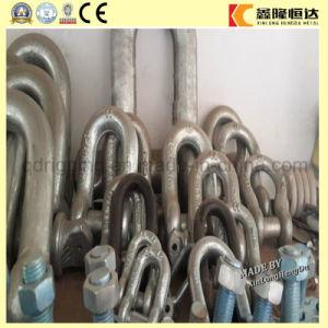Kundenspezifischer U Typ des Fabrik-Preis-Shackles 6:1 G209