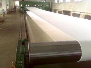 66 de nylon / Filtro de nylon 6 correia de tecido para prensa-filtro