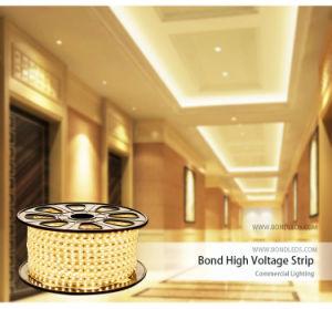 striscia flessibile dell'indicatore luminoso di 220V SMD 5050 RGB 60LED LED per vivere