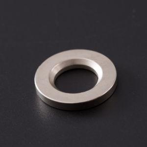 De Sterke Krachtige Magneet van uitstekende kwaliteit van het Neodymium van NdFeB van de Zeldzame aarde van de Ring
