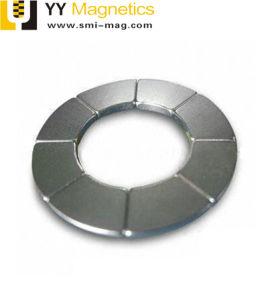 Профессиональные производители неодимовый половины Arc магнита