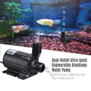 La CC 24V scorre pompa anfibia di isolamento idroelettrico economizzatore d'energia sommergibile 1000L/H per lo stagno di pesci