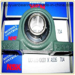 NSK, das hohe Quanlity Chromstahl-Kissen-Block-Peilung Ucp204 trägt