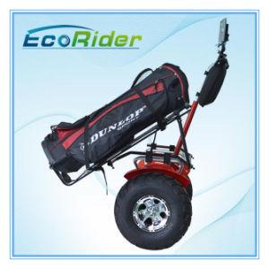 Motor sem escovas 2 Rodas Scooter eléctrico