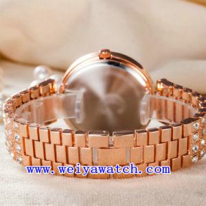 Orologio delle signore del ODM della vigilanza dell'acciaio inossidabile (WY-G17004B)