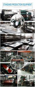 Portello d'acciaio interno dell'americano del portello di stile della fabbrica dell'oscillazione classica della decorazione