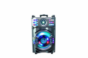 12inch beweglicher bunter heller professioneller lauter Lautsprecher Al1261 Amaz