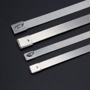 4.6X250mm de Banden van de Kabel van het Roestvrij staal 316ss voor de Klem van de Pijp