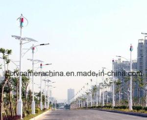 300W 24 V CA Permannet verticale de l'aimant génératrice éolienne de petite à la vente (SHJ-NEV300Q4)