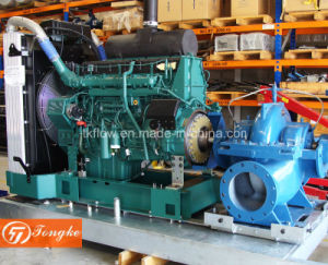 중국 고품질 디젤 엔진 수도 펌프를 뇌관을 달아 각자와 가진 쪼개지는 케이싱 펌프