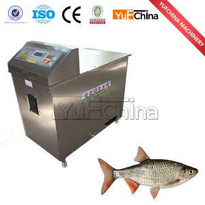 Máquina de corte de peixe em aço inoxidável