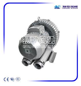 Kleine Wind-Hochdruckpumpe China-IP55 für Überzug-Gerät