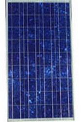 Polykristalline Silikon-Solarverkleidung 60W (LR-P002)