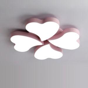 Van het LEIDENE van de Zaal van de eenvoudige Kinderen van de Slaapkamer van de Woonkamer de Lamp Plafond van Dimmable