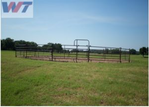 Comitato della rete fissa dell'azienda agricola/comitati e cancelli d'acciaio galvanizzati bestiame del bestiame da vendere