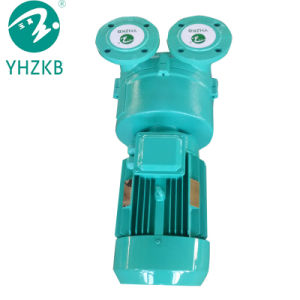 La pompe à vide anneau liquide pour l'industrie de la production de la plaque