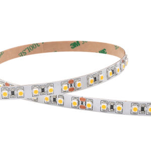 Tester bianco/rullo 240 LED (certificato delle strisce 5 di luminosità eccellente SMD3528 LED di CE&RoHS)