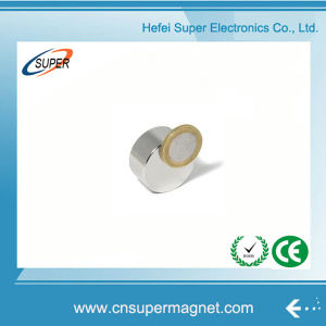 N52 высокого качества с неодимовыми магнитами диска