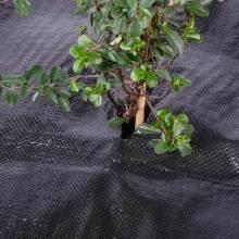 Stuoia del Weed per agricoltura ed i giardini