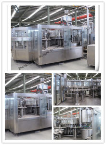 12, 2개 Ltr Plastic Bottles Filling Machine (DCGF)에 500bph Sparkling Water