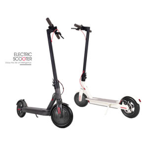 Brosse Popualr Scooter électrique moteur DC 24V 100wunderwater Elderlyelectric Scooterscooter electric scooter électrique 1700 Wattelectric Scooter Made in USA