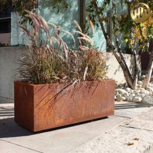 Jardín de metal Maceta&Planterbox/Outdoor Square Garden de la sembradora