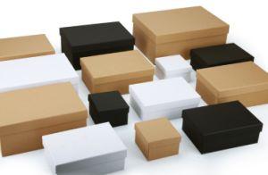 Casella di trasporto di carta opaca bianca impaccante del cartone del regalo astuto generico vuoto su ordinazione del telefono mobile con l'inserto della gomma piuma