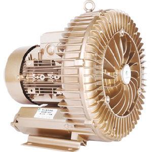 ventilatore laterale della Manica 1.7HP per le procedure di produzione di alta qualità