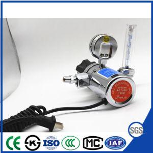 Regelgever van Co2 van het Type van Exproting de Elektrische Verwarmde met Fiowmeter