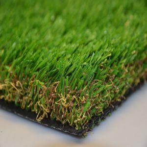 Fs met het Kunstmatige Gras van de Tuin van de Stam
