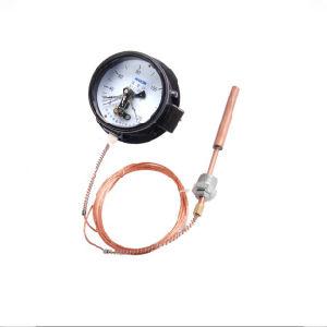 Tipo elettrico termometro di pressione del contatto di alta qualità con Ce
