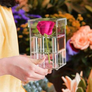 Apagar/Cor Rose Deluxe acrílico decorativo Flower Exibir caixa de embalagem
